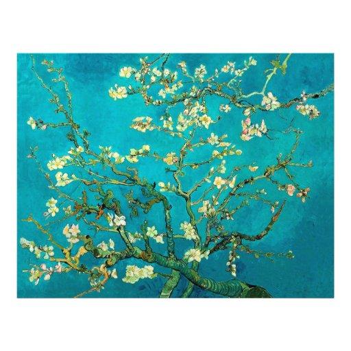 Árvore de amêndoa de florescência de Vincent van G Panfletos Personalizado