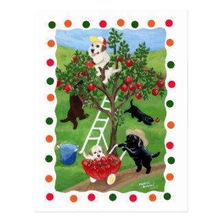 Árvore de Apple Labradors (ponto) Cartao Postal