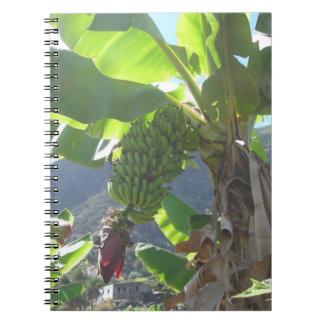 Árvore de banana com caderno da flor