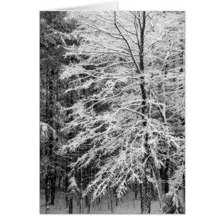 Árvore de bordo esboçada na neve cartoes