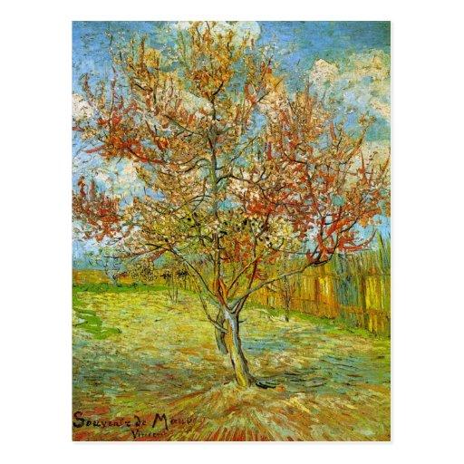 Árvore de pêssego cor-de-rosa de Van Gogh na flor, Cartao Postal