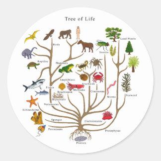 Árvore de vida adesivo redondo