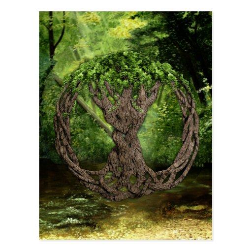 Árvore de vida celta cartao postal