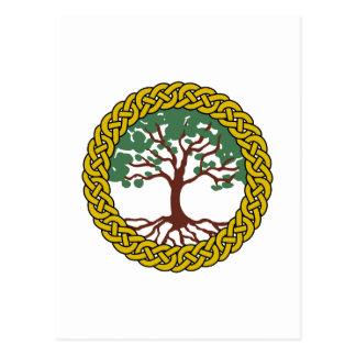 Árvore de vida celta cartão postal