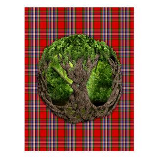 Árvore de vida celta e de Tartan de MacFarlane do Cartão Postal