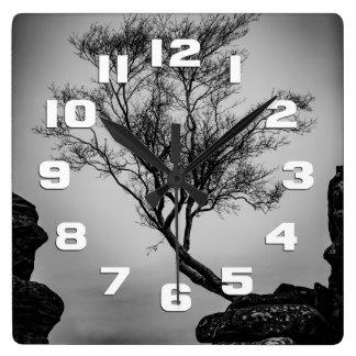 Árvore em um penhasco relógio quadrado