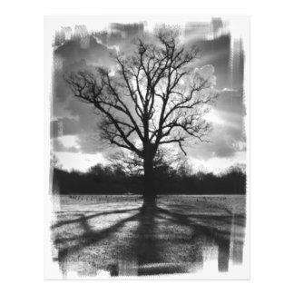 Árvore estéril dos ramos panfletos