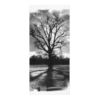 Árvore estéril dos ramos planfetos informativos coloridos