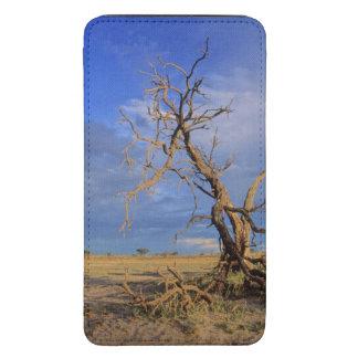 Árvore inoperante do espinho do camelo (acácia bolsa de celular