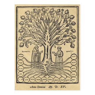 Árvore medieval da ciência cartão postal
