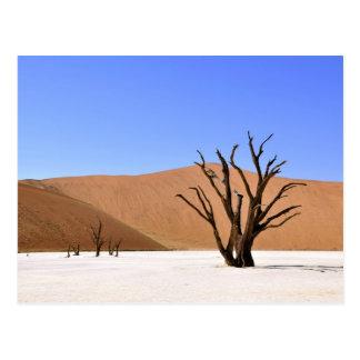 Árvore no cartão do deserto