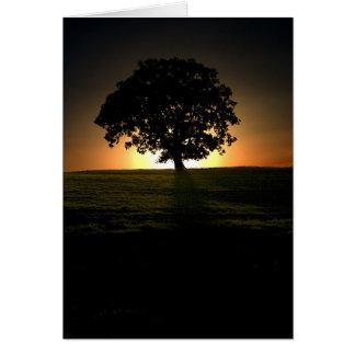 Árvore no por do sol. Cartão por cARTerART.