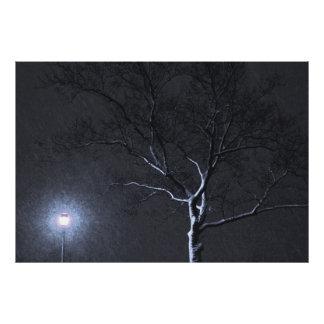 Árvore preta & branca do inverno da paisagem na pa foto arte
