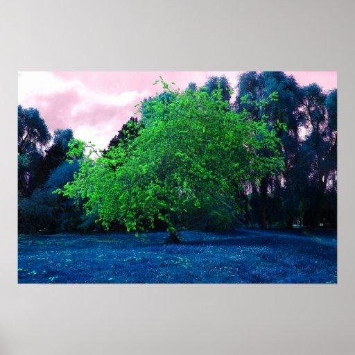 Árvore psicadélico pôsteres