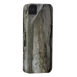 Árvore velha capinhas iPhone 4
