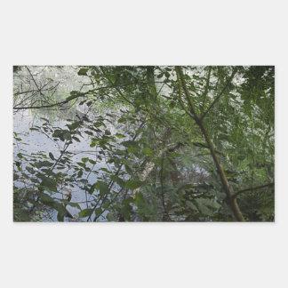 Árvores Adesivo Retangular