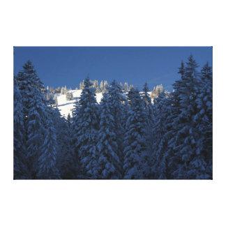 Árvores da neve da suiça das belas artes das
