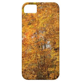 Árvores da queda capa barely there para iPhone 5