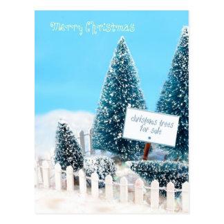 Árvores de Natal para a venda com sinal Cartoes Postais
