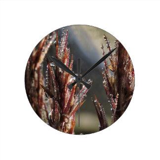 Árvores do diamante relógio redondo