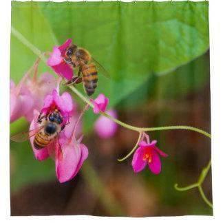 As abelhas na videira coral florescem a fotografia cortina para box