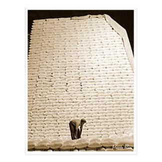 As bolsas do açúcar, história, Puerto Rico Cartão Postal