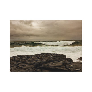 """As canvas da costa atlântica selvagem"""