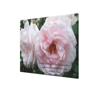 As canvas - envolvidas - core cor-de-rosa com