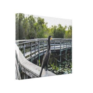 As canvas esticadas Cormorant