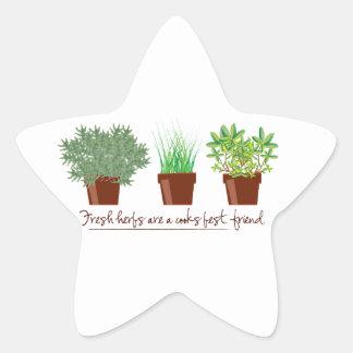 As ervas frescas são um cozinheiro adesivos estrelas