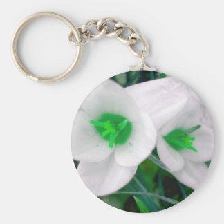 As flores verdes de St Patrick Chaveiro