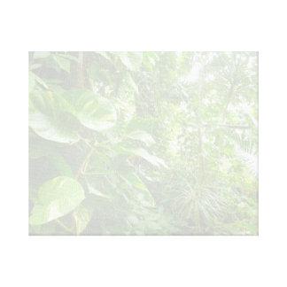 As folhas gigantes lavam para fora a opinião da se impressão de canvas esticadas