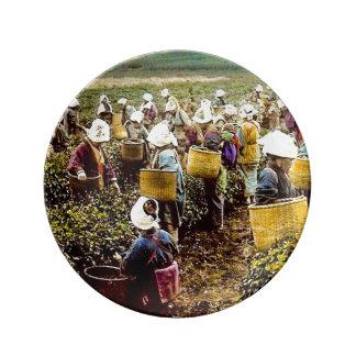 As máquinas desbastadoras do chá da mão velha do prato de porcelana