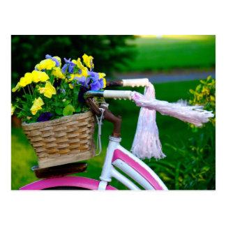 As meninas apenas querem ter o divertimento, bicic cartões postais
