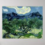 As oliveiras de Vincent van Gogh (1889) Pôsteres