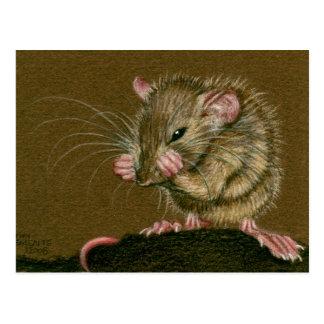 As patas loucas do rato levantam o cartão