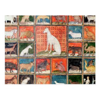 As propriedades dos animais: Os mamíferos Cartão Postal