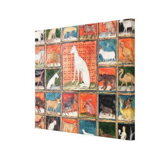 As propriedades dos animais: Os mamíferos Impressão Em Canvas