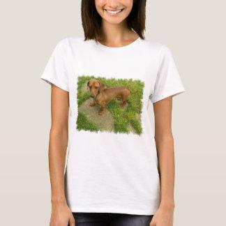 As senhoras de Daschund couberam o t-shirt Camiseta