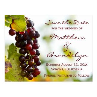 As uvas da adega do vinhedo salvar os cartão da