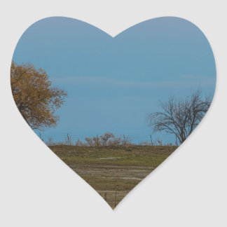 Ascensão de novembro Supermoon Adesivo Coração