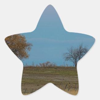 Ascensão de novembro Supermoon Adesivo Estrela