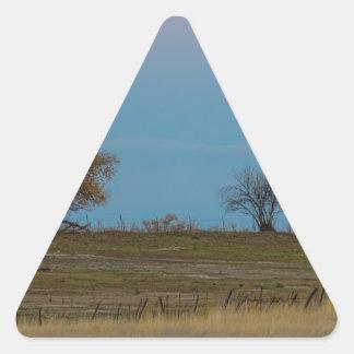 Ascensão de novembro Supermoon Adesivo Triangular