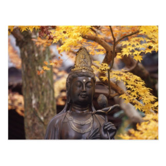 Ásia, Japão, Buddha Cartão Postal
