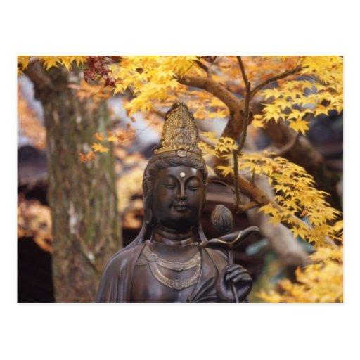 Ásia, Japão, Buddha Cartoes Postais