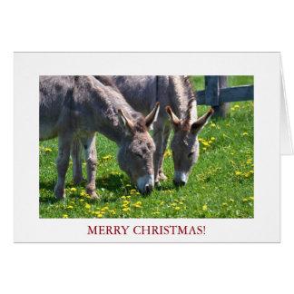 Asno do animal do Natal Cartão