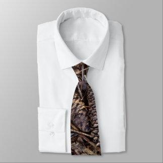 Assoalho da floresta com Pinecones e foto das Gravata