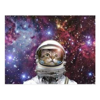 Astronauta do gato - gato louco - gato cartão postal