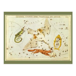 Astronomia do vintage, carta de estrela, mapa das  cartões postais