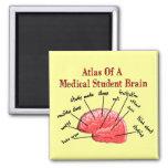 Atlas do cérebro da estudante de Medicina Imãs